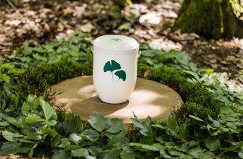 friedwald-urne_01_900x600